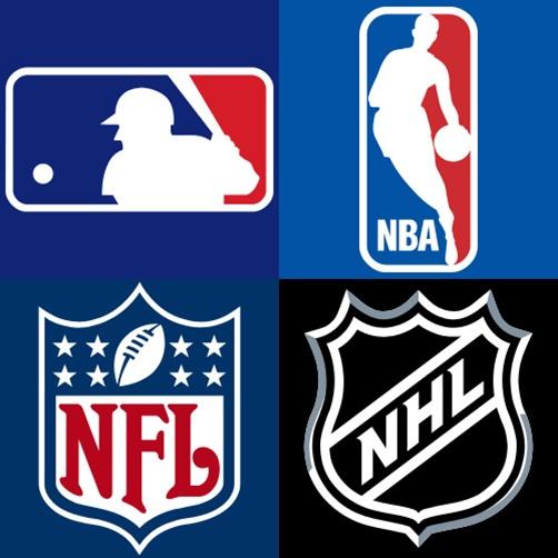 Associations sportives sports américains en France