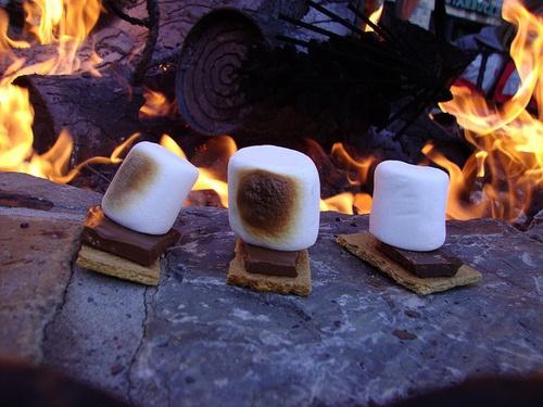 Smores au feu de camp dans les camps de vacances US
